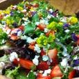 Seasonal Composed salad