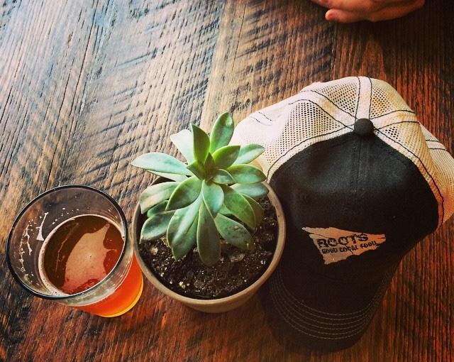 Sycamore brew